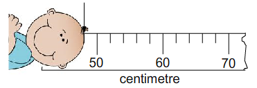 Scale readings 1: Different scales - 11PlusGenie